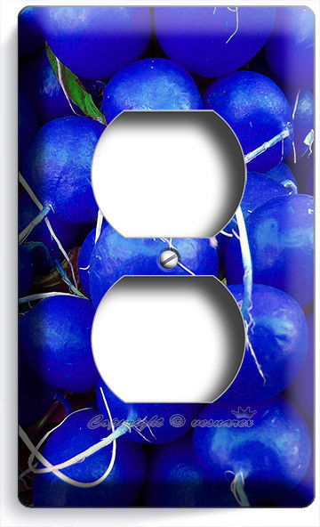 BLUE RADISHES OUTLET WALL PLATE COVER VEGAN VEGETARIAN KITCHEN HOME HOUSE DECOR