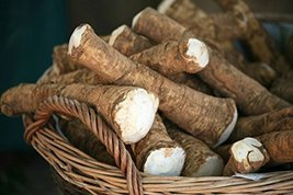 Horseradish Root, 5 Pounds (Sold by Weight). Great for Planting, Seasoni... - $39.99