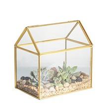 NCYP 4.33 Inches Geometric Glass Decor Terrarium Centerpiece Tabletop Pl... - $45.99
