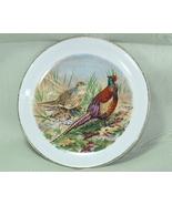 Alfred Meakin Liverpool Rd Pottery Game Birds Pheasant Plate - $10.00