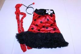 Women's Ladybug S/M Halloween Costume Outfit - $15.88