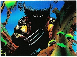 Wolverine From Then 'Til Now Set 2 Trading Card #17 Ferocious Sam Kieth - 1992 - $2.95