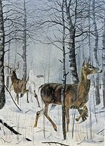 Danger Ahead, buck and doe Deer, By Artist Charles H. Denault, print art, (pa... - $14.84