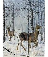 Danger Ahead, buck and doe Deer, By Artist Charles H. Denault, print art... - $14.84