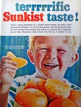 "Sunkist Navel Orange, 60's full page Color Illustration, 10 1/2"" x 13 1/2"" Pr... - $12.86"