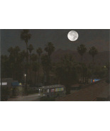 Night Life in Palm Springs Fine Art Postcard Ph... - $3.99