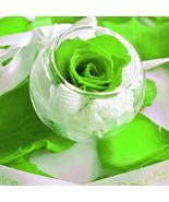 RoseStory®|Exquisite Single Preserved Green Ros... - $55.00