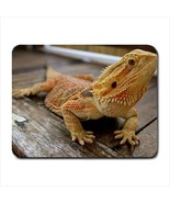 Bearded Dragon Lizard Mousepad (Neoprene Non-slip Mousemat) - $7.71