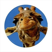 Giraffe Face Round Porcelain Ornament - Holiday Seasons - $7.71