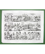 ANCIENT EGYPT Scenes Daily Life Farming Transpo... - $11.78