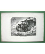COSSACK HORSES in Winter Storm by Schreyer - Victorian Antique Print - $19.78