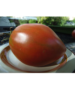 Grightmire's Pride - Another big heart-shaped pink heirloom tomato - $4.00