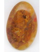 Petrified Wood Cabochon 23 - $7.90