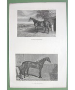 RACE HORSES in Stable & Paddock - 1860s Original Steel Engraving Print - $12.58