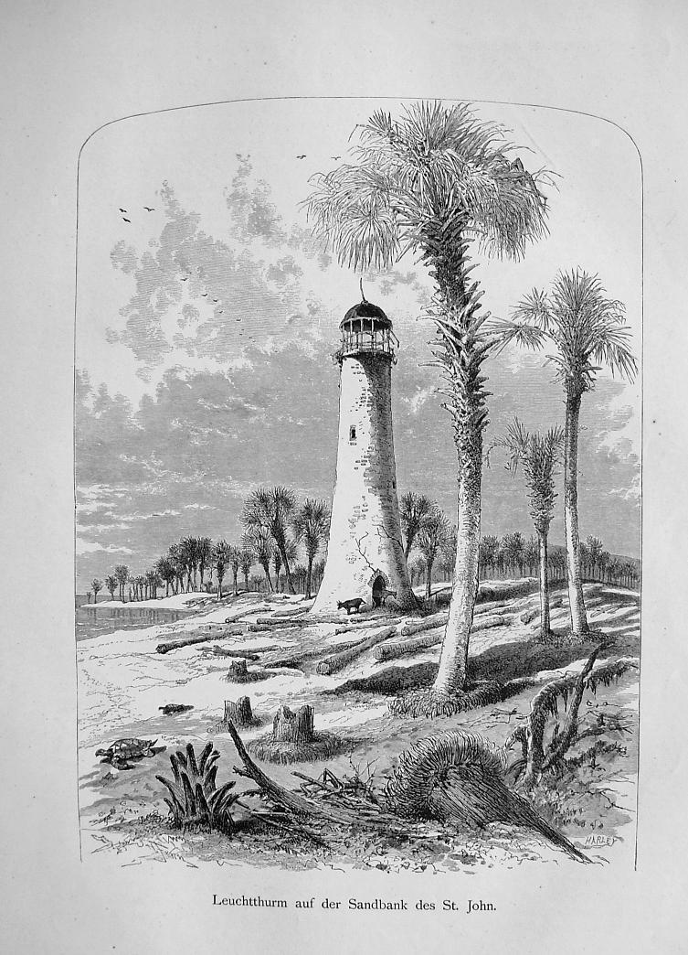 FLORIDA Lighthouse on St. John River - German Antique Print