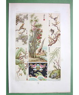 CHINA Decorative Paintings Birds Flowers - COLOR Litho Print by Racinet - $37.03