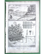 BIRD HUNTING Partridge Traps Molting Cage - 1763 Diderot Folio Print - $20.95