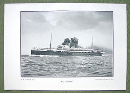 SS CARTHAGE Steamship - 1911 Offset Litho Print - $8.42