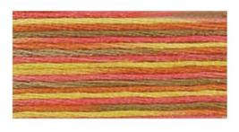 Maple (4510) DMC Coloris Floss 8.7 yd skein  - $1.55