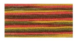 Indian Summer (4511) DMC Coloris Floss 8.7 yd skein  - $1.55