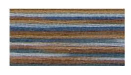 Paris (4515) DMC Coloris Floss 8.7 yd skein  - $1.55