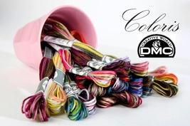 FULL BUNDLE DMC Coloris Floss (24 skeins) 6 strand  8.7 yd skeins cross ... - $31.62