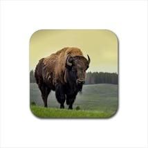 American Bison Non-Slip Coaster Set - $6.74
