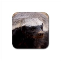 Honey Badger Non-Slip Coaster Set - $6.74