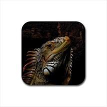 Iguana Non-Slip Coaster Set - $6.74