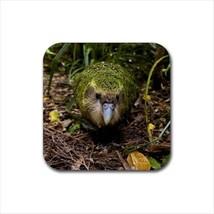 Kakapo Bird Non-Slip Coaster Set - $6.74