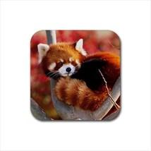 Red Panda Non-Slip Coaster Set - $6.74