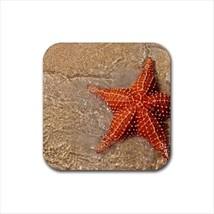 Starfish Non-Slip Coaster Set - $6.74