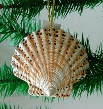 Tropical Beach Seashell Christmas Ornament Spotted ORNShell02 Resin - $15.76