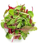 Lettuce Mixed Greens Gourmet Non GMO Heirloom Vegetable 25 Seeds - $1.77