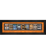 University of Tennessee Officially Licensed Framed Campus Letter Art - $39.95