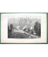 AUSTRALIA Scenery Settlement in Victoria - 1890 Antique Print Engraving - $8.42