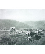 SCOTCH CATTLE Cows Meadow - VICTORIAN Antique Print by R. BONHEUR - $9.84