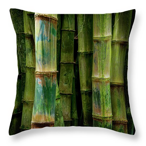 Bamboo Detail in Maui, Throw Pillow, fine art, home decor, accent pillow