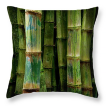 Bamboo stalks 2 pillow thumb200