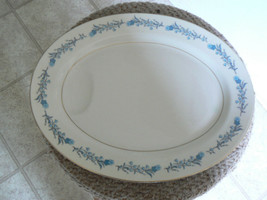 Theodore Haviland 16 inch oval platter (Clinton) 1 available - $20.74