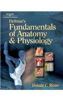 Delmar's Fundamentals of Anatomy and Physiology  by Rizzo 1111320039