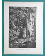 AFRICA Scene in Jungle Rain Forest - 1877 Wood Engraving Illustration - $8.09