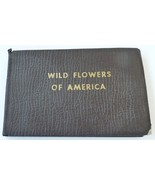 Wild Birds America Harvey vintage pocket book field guide 1932 Lawson ar... - $19.00