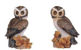 5.5 Inch Pair of Owls Nature Wildlife Animal St... - $26.99