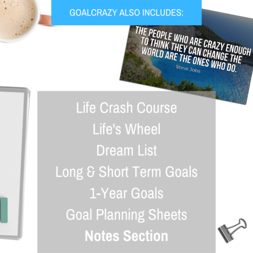 Goal Crazy 2019 Planner - 90 Day Productivity Journal, Black Leather, Undated image 7