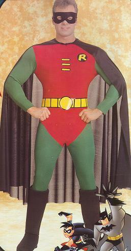 ROBIN ORIGINAL COMIC BOOK COSTUME ADULT SZ MD
