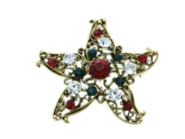 Christmas Star Pin & Brooch with Gold Trim - $10.95