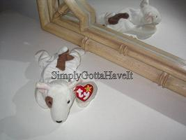Ty Beanie Babies Baby Butch the Bull Terrier Dog 1999 - $9.99
