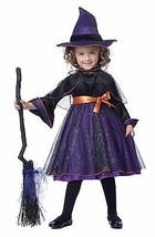 2015 New!!! California Costumes Hocus Pocus Girl Kid Halloween Costumes ... - $30.00