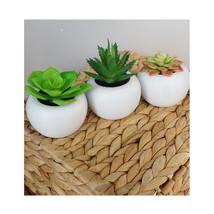Small Faux Succulent Plant Potted, Set of 3 Succulent Planter Set - $15.83